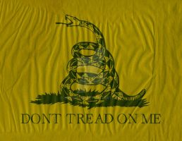 Gadsden Don't Tread on Me Flag by hassified