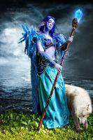 Night Elf World of Warcraft by DariyaSkv