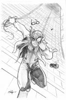 Spidey Commish by the-BluePhoenix