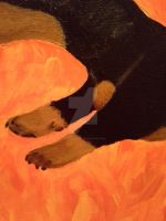 Leaping Doxie - Detail 3 by navcallahan