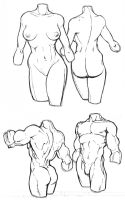 Body Sketches II by Fexx-Neon