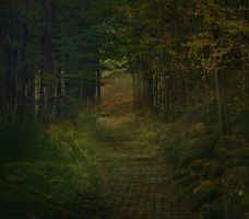 Forest Premade Background by Nitwitbrit