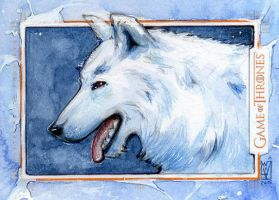 Game of Thrones - Ghost / Wolf by WojikHell