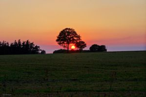 Sunset V by Rayon2lune