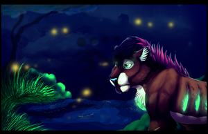 Fireflies by Nala91