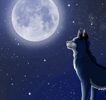 ..: falling stars - animation try :.. by Freewolf7