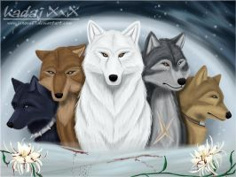Wolf's Rain: The Pack by Jenova87