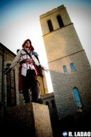 Ezio costume: Perched by Sound-Resonance