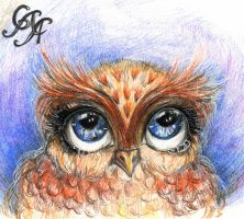 Portrait of a little owl by Alexandra-Glazer
