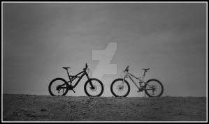 Specialized by Rumburak512