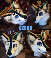 Commission head, Keeba by RaviTheBlueTiger