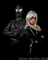 Black Cat and Spidey by RiyoMitsukiModeling