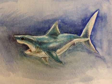 Greatwhite 2014 by feeves