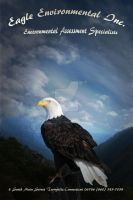 Eagle 4 by val2262001