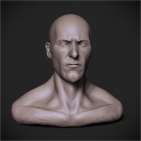 Male Head ZBrush Speedsculpt by PatrickvanR