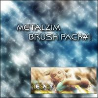 First Brush Set by METALZIM
