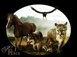 Pact Of Peace v2 by duckiethedonkey