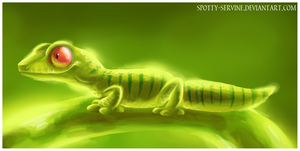 Green Gecko by Frozenspots