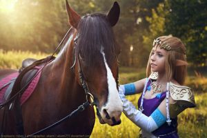Familiarity with Link's horse by MargoIIIa