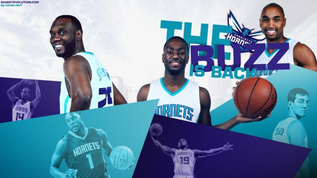 Hornets 2014 : The Buzz Is Back Wallpaper by rOnAn-Ncy