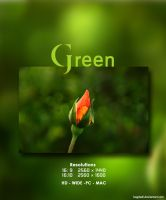 GREEN by Bagdadi