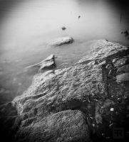 River Stones XXX by FilipR8