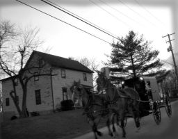 Horse n' Buggy by aestheticINvogue