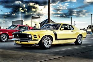 Boss 302 by garnettrules21