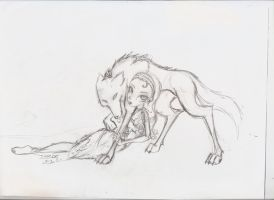 wolf sketch by lexet