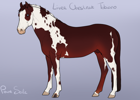 Adoptable - SOLD by BH-Stables