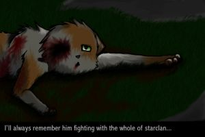 Fighting with the whole of Starclan by SkyWolf124