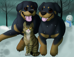 Two Doge One Cat by SoberDOGS