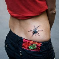 Spider by tikos