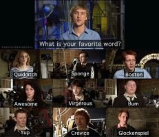 Harry Potter Cast: Fave Words by cookiemonsterblue