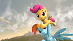 Scoots can fly by Xppp1N