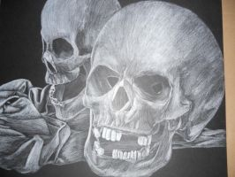 skulls by TheIncredibleTheory