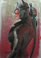 Catwoman by zecarlos