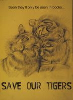 Save our Tigers by wondergunner