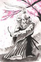 Yojimbo 2 by SpaciousInterior