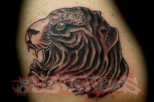 tiger trad - ish by gil893tattoos