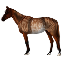 Horse Adopt SOLD by Zivera
