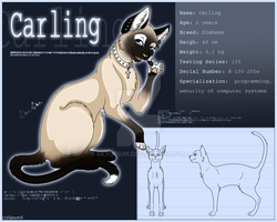 Carling Character Sheet by Opium5