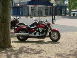 Harley Davidson - red by Mate397