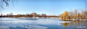 Frozen lake... by Iulian-dA-gallery