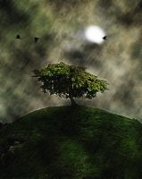 Surreal Tree by ladida2010