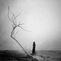 They Are Coming To Shore by intao