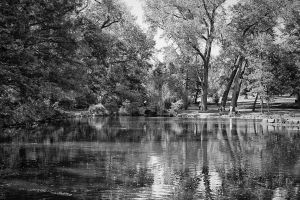 Reflections at the Park by clippercarrillo
