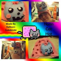 Nyan Cat Hat by CupcakeCrafty