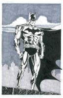 BATMAN CHARITY AUCTION PIECE by FanBoy67