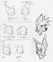 Animal drawing tests and bla by MisterBobIsMe